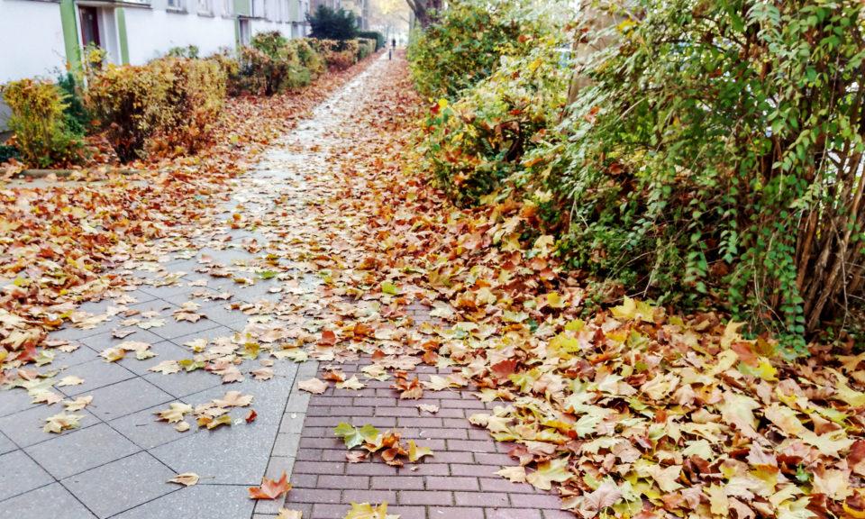 radweg-granitzstrasse